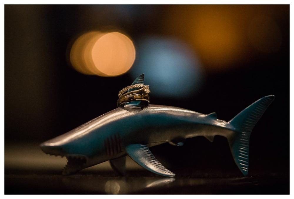 104-DanijelaWeddings-Toronto-wedding-GardinerMuseum-BlushandBloom-rings-shark.JPG