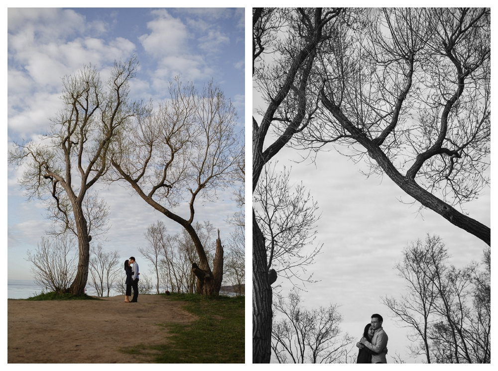 Kiss me under the big tree facing the lake Ontario and seal our engagement in colour and black and white.