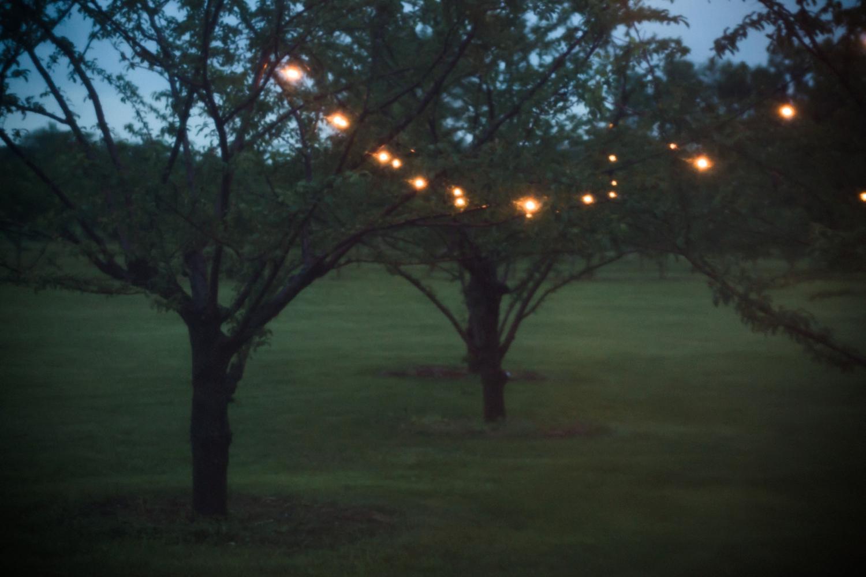 Kurtz-orchard-wedding-photos-danijelaweddings-rainy-romantic069.JPG