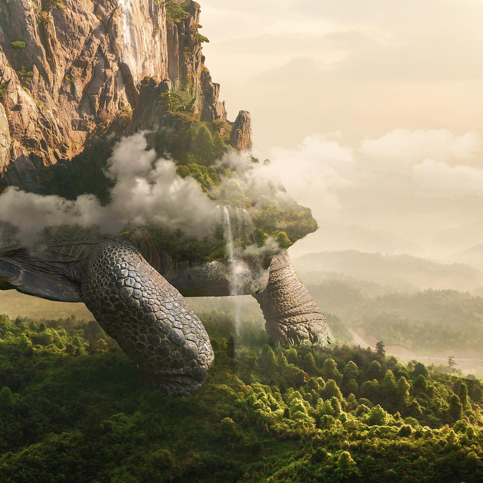 Giant-Tortoise-Close-up-2.jpg