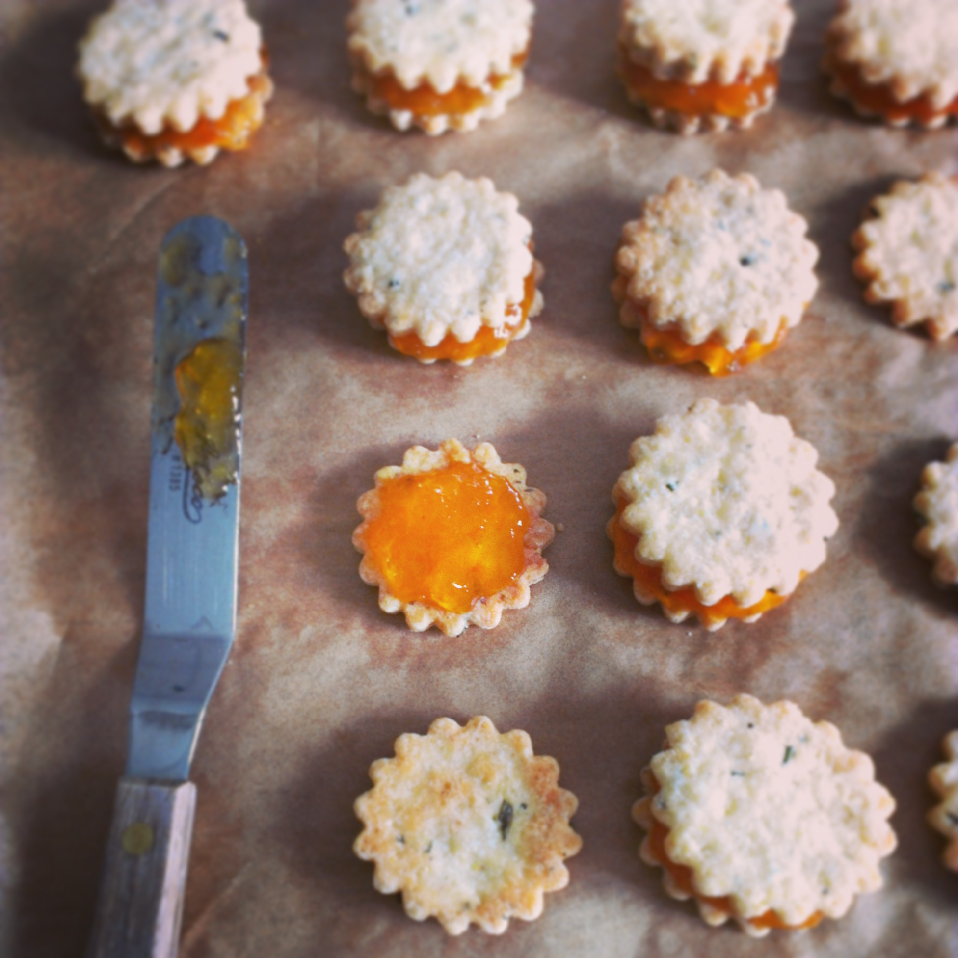 Rosemary Shortbread with Apricot Jam