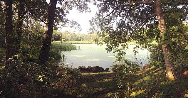 Peeper's Pond