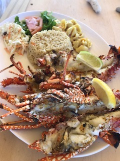 Cray fish lunch on the tiniest island I've ever been on:  Sandy Island .