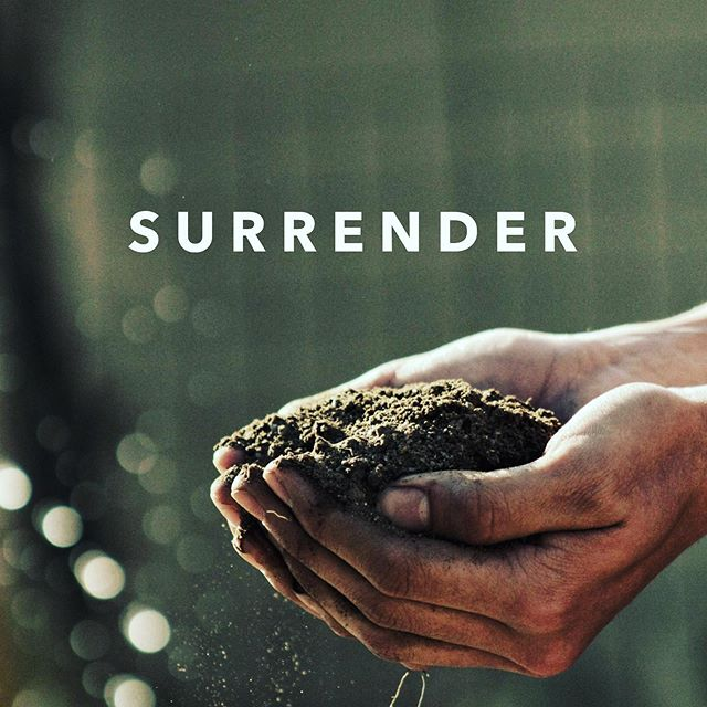 """S u r r e n d e r  Our retreat is next weekend and the theme is """"Unwavering :: Whole Hearted Surrender"""". The idea of surrender is a challenging one. It means letting go of my plans and my control. What is God inviting you and me to surrender to Him - to his plan, to his timing, to his purpose. What are we holding in our hands today that He wants to use for good.  Let's camp out in Romans 12:1-2 for a few minutes as we head into this week. """"Take your everyday, ordinary life—your sleeping, eating, going-to-work, and walking-around life—and place it before God as an offering. Embracing what God does for you is the best thing you can do for him."""" Whether you are joining us at the retreat or not, we pray that this week is one of walking with the One who gives us breath - hearts whole and surrendered. #unwaveringretreat #unwavering #surrender #lampandlight #ifequip #shereadstruth #jesuscalling #bloomwomensministries #bloomwomen #womensministry"""