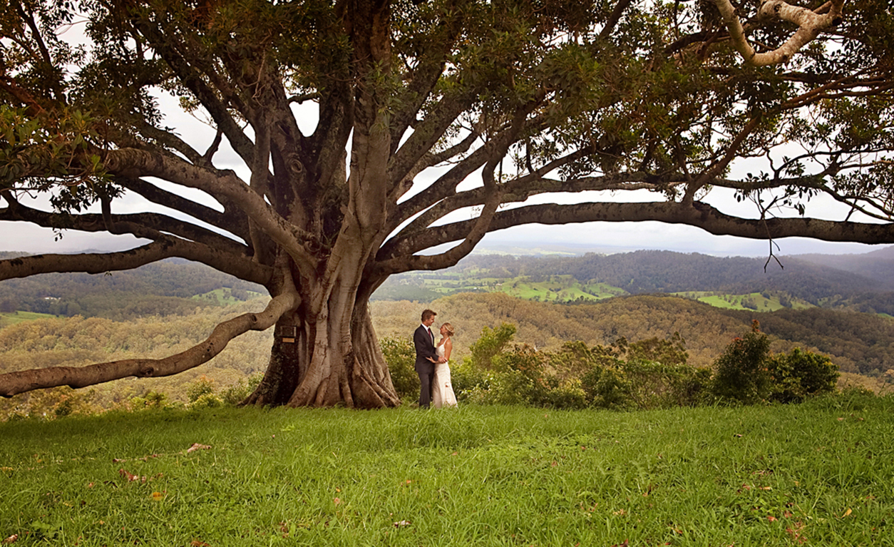 Couple by fig tree 2.jpg
