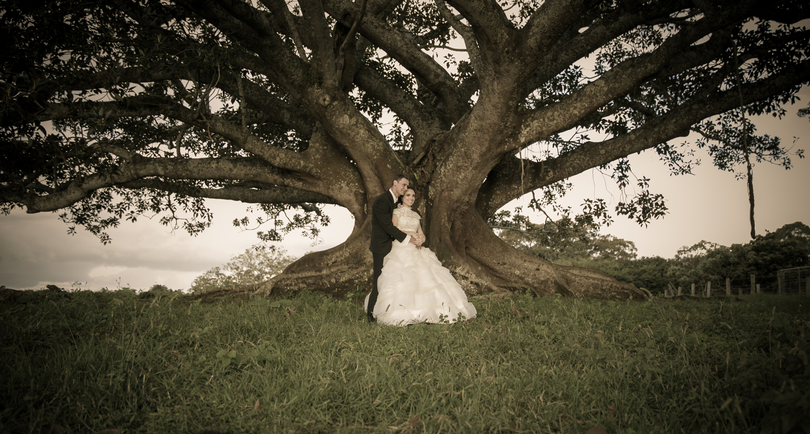 Couple by fig tree.jpg