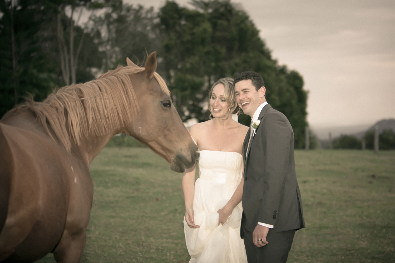 Couple and horse.jpg