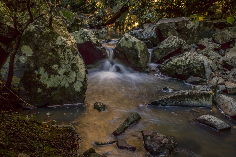 Maleny waterfall Penny Riddoch-2.jpg