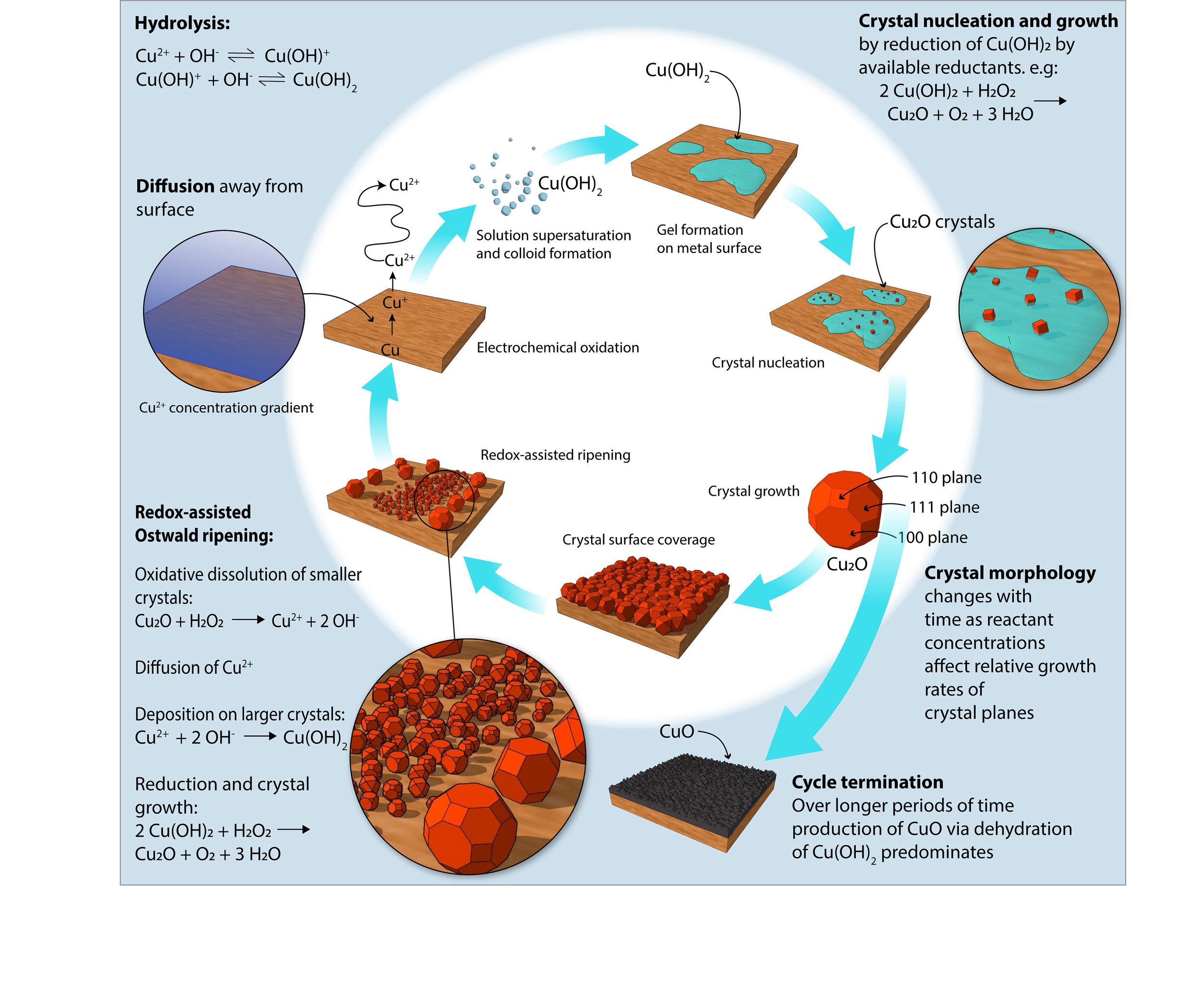 Copper corrosion mechanistic diagram