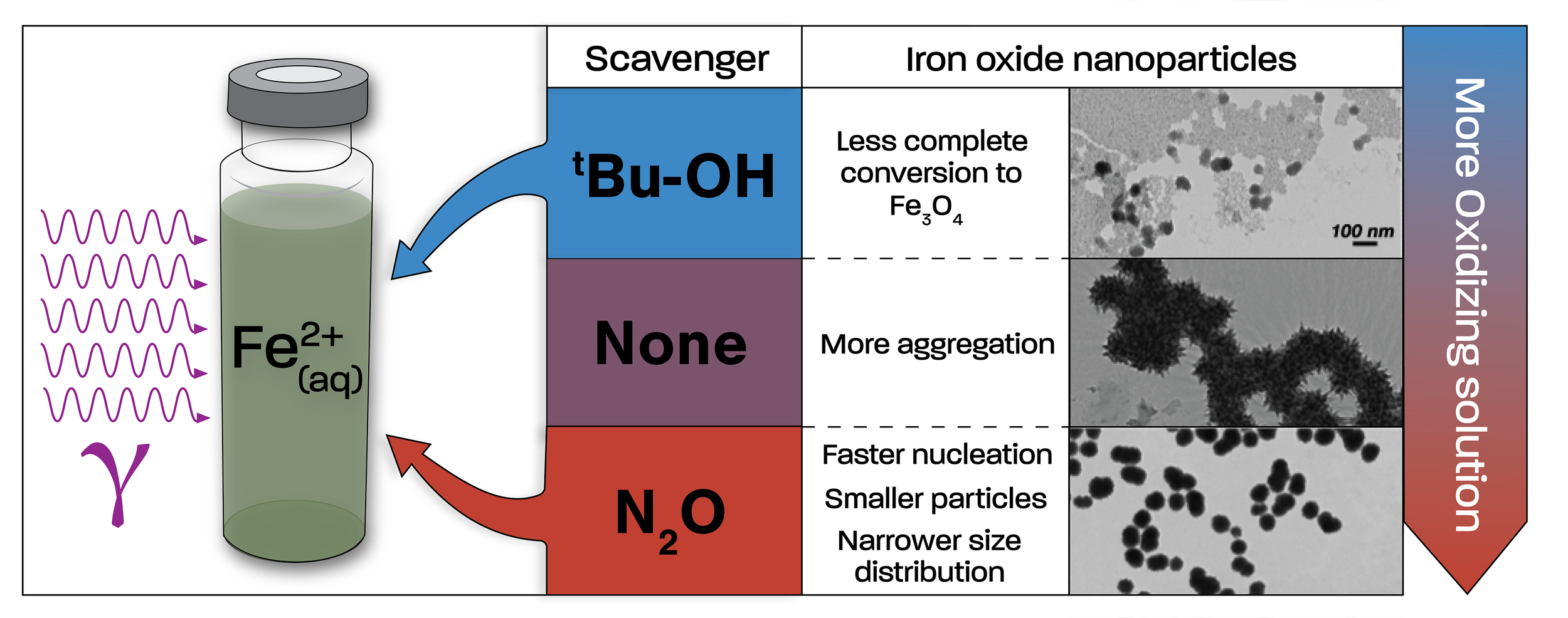 Graphical abstract for a publication on gamma-radiation-induced iron oxide nanoparticle formation