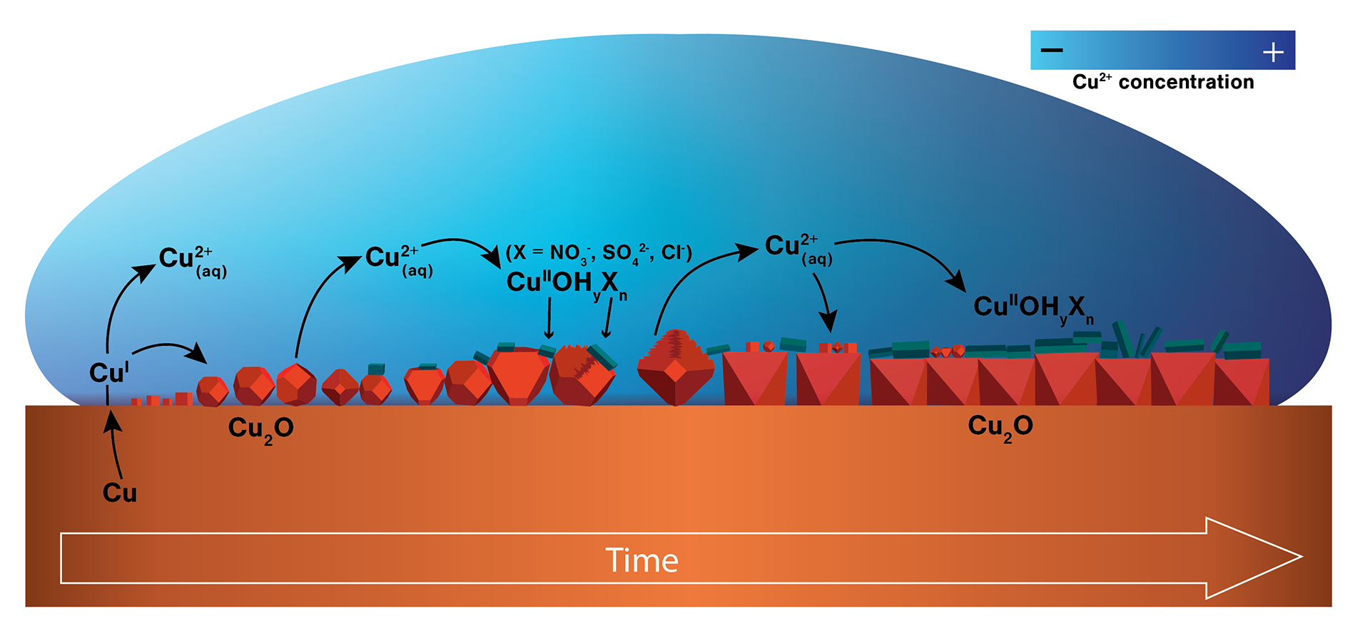 Diagram of the mechanism of copper corrosion in a small droplet