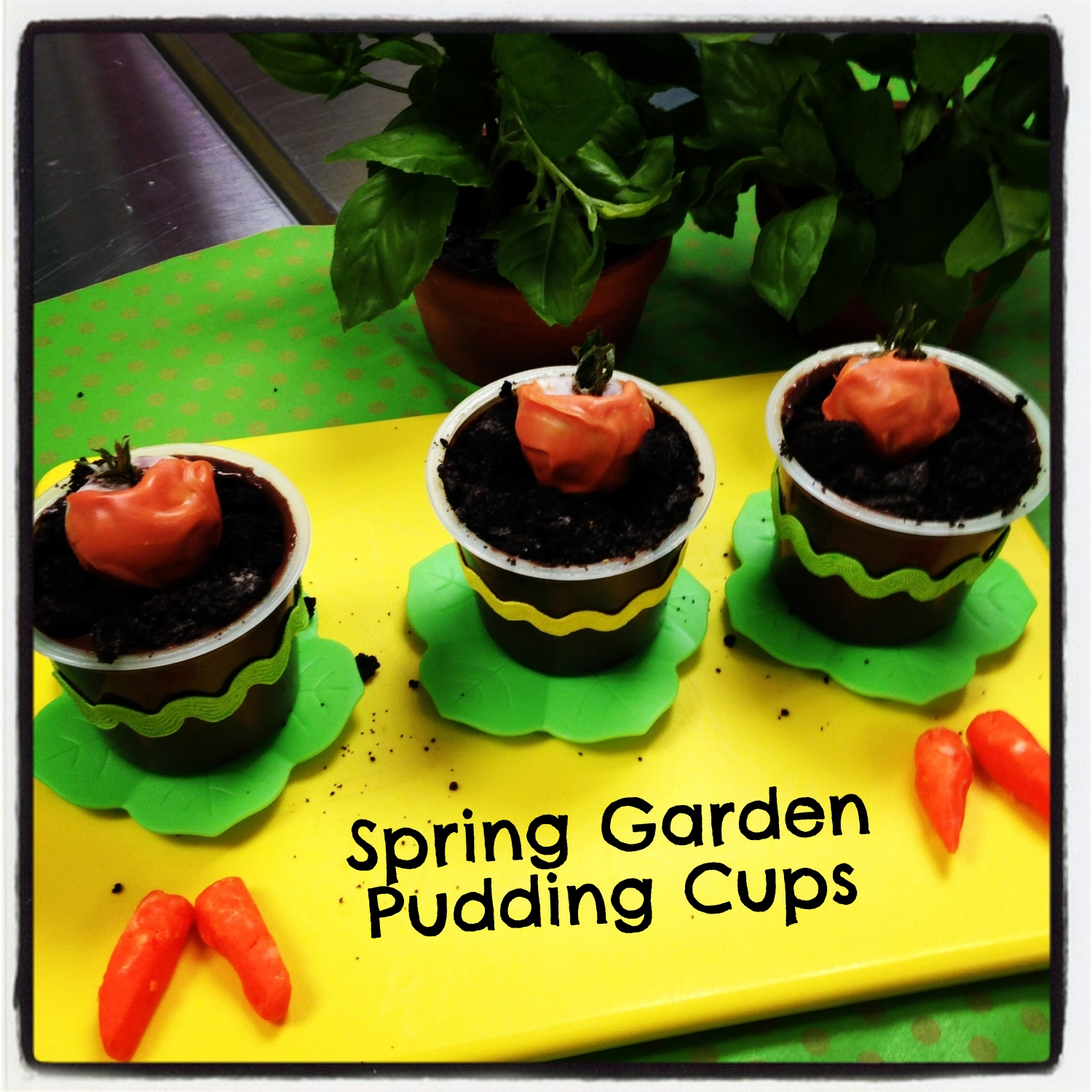 Recipes for Kids- Spring Garden Pudding cups on www.ChefShayna.com