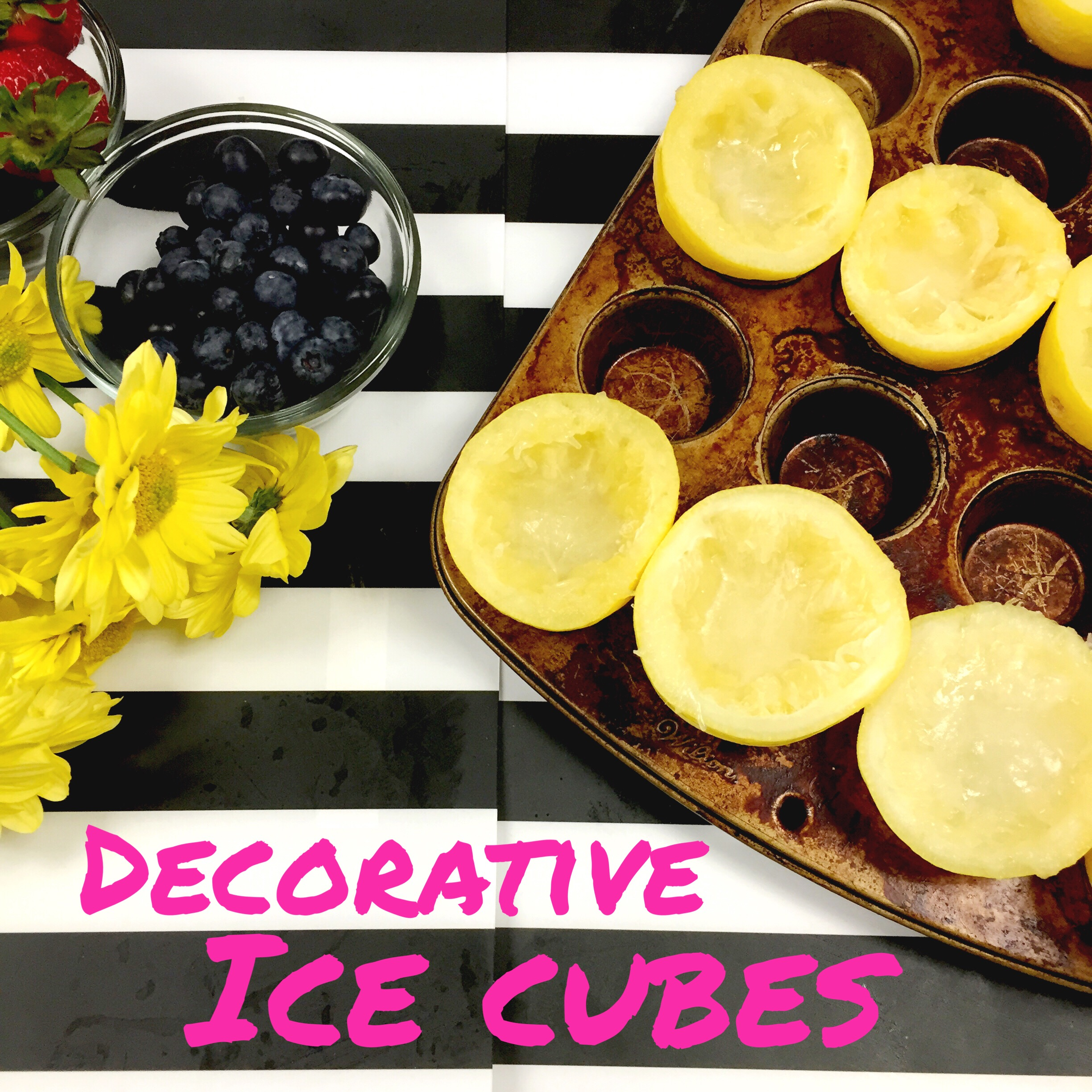Decorative Ice Cubes- www.ChefShayna.com