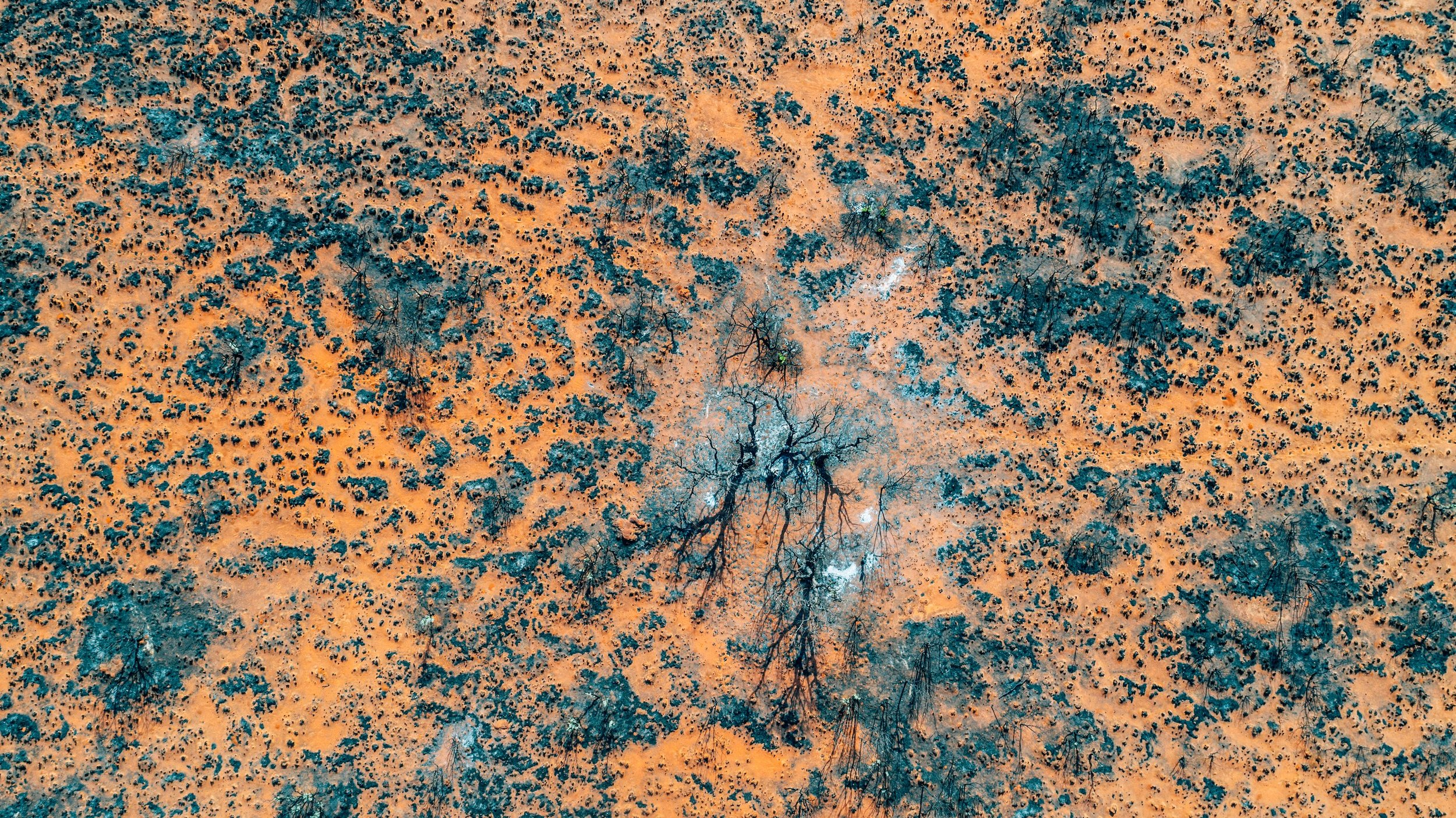 BROOME 4 - WESTERN AUSTRALIA - ELLIOT HUNT