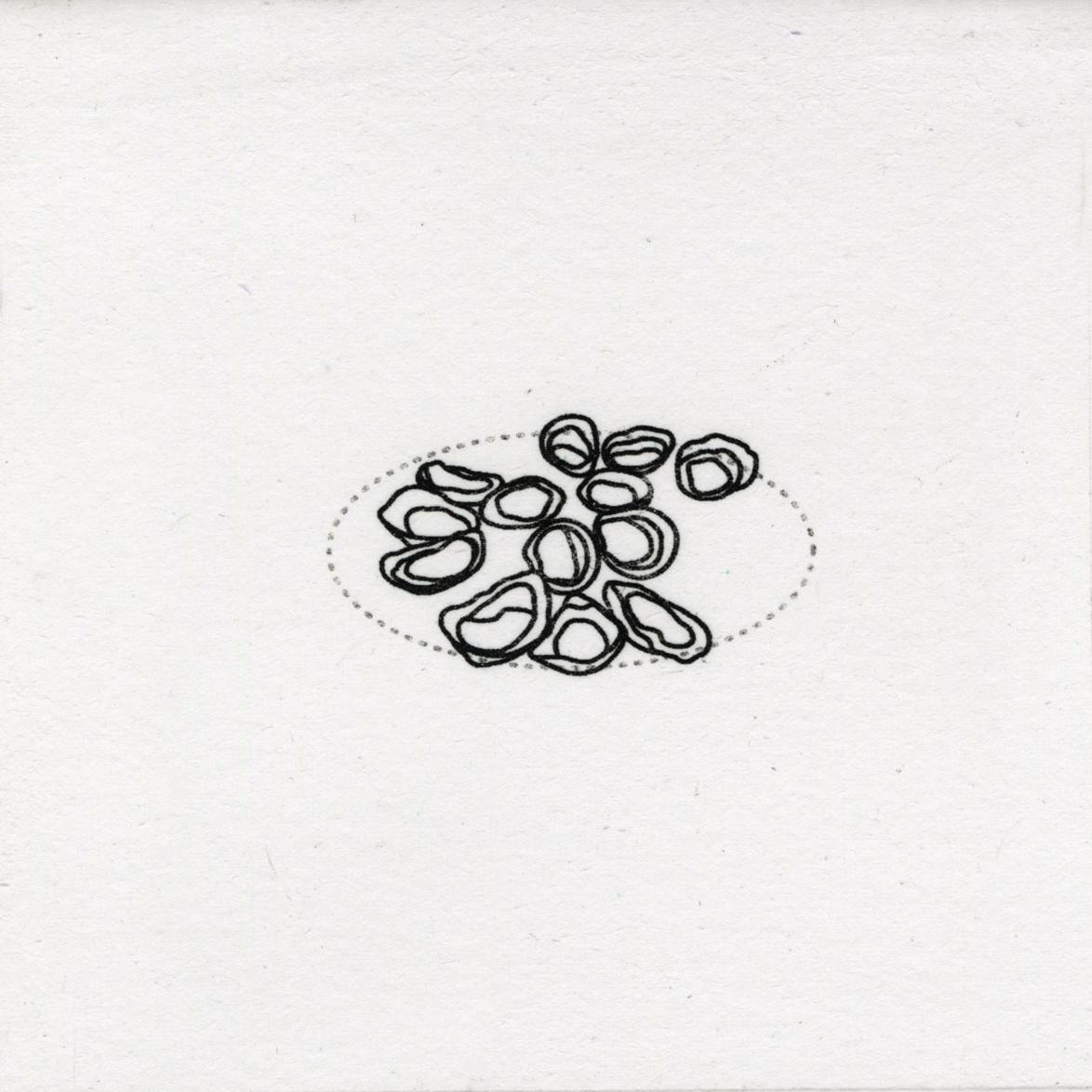 prints32.jpg