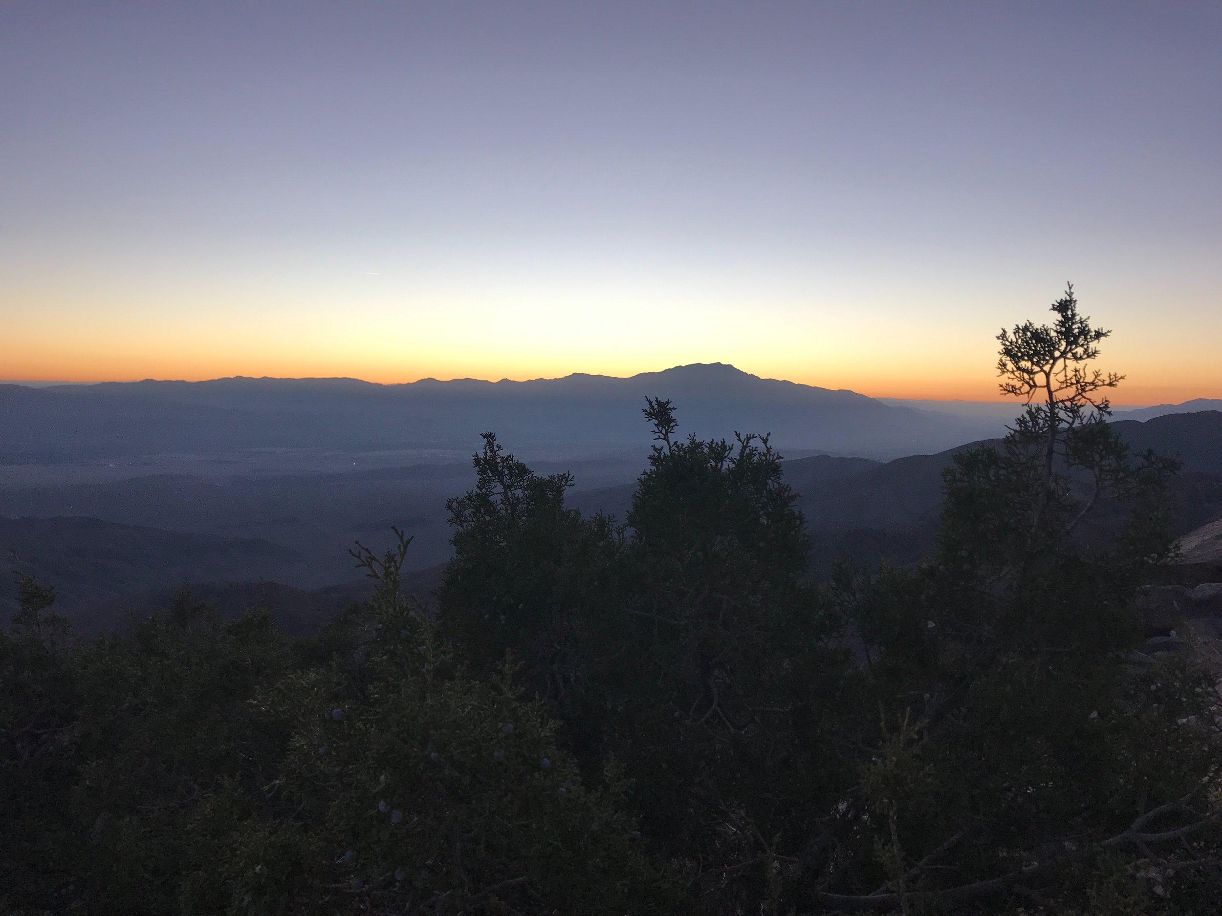 Sunset in Joshua Tree