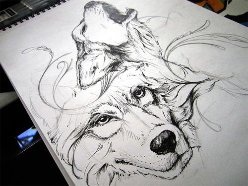 wolfSketch.jpg