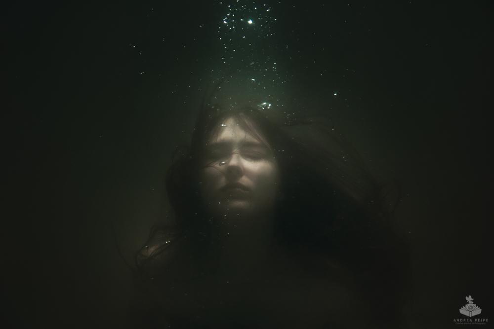 """""""A myriad of stars"""""""