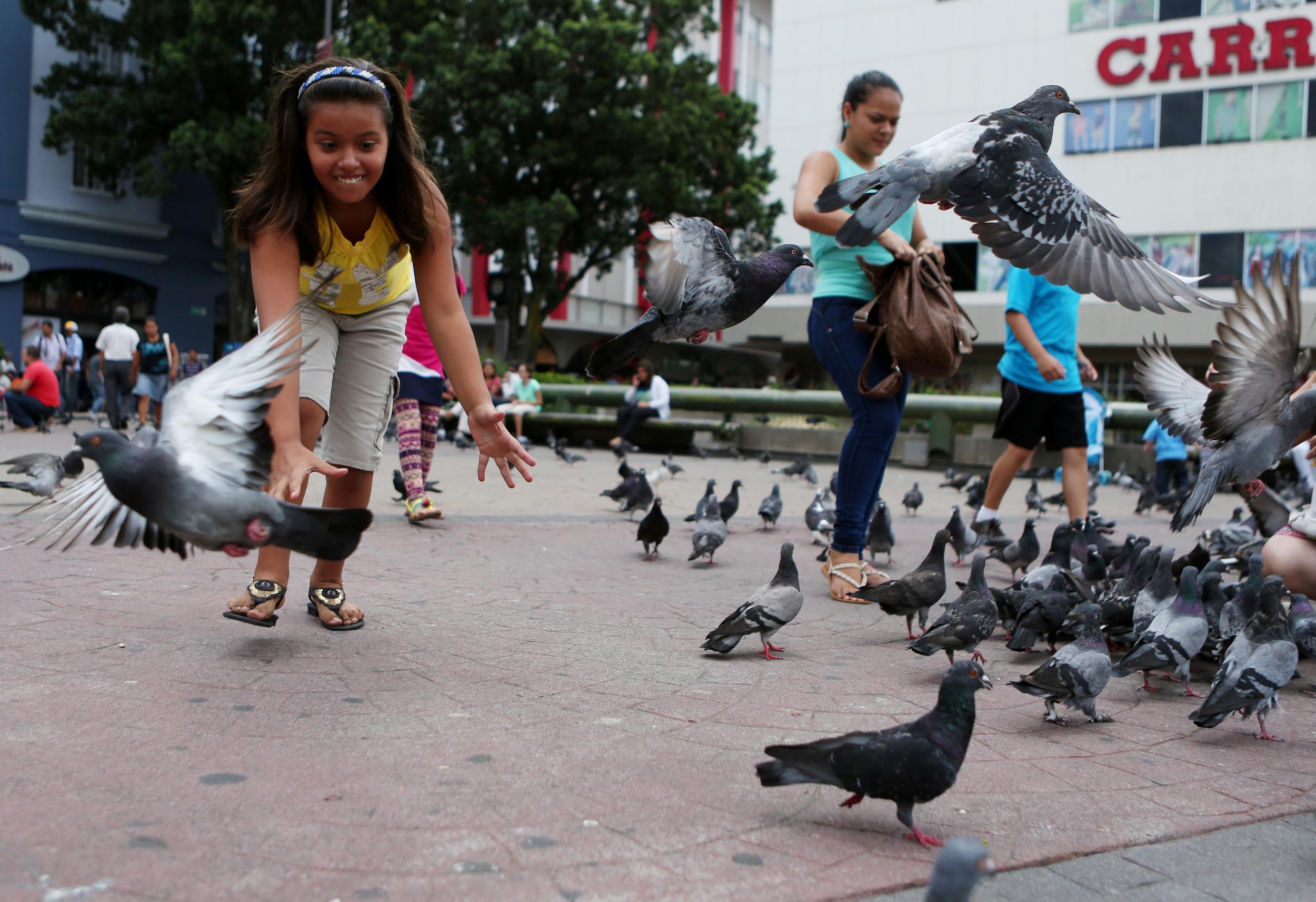 CostaRica_2014_412_bdh.jpg