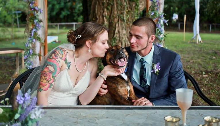 dreamclip films | dog in ceremony | dog.jpg