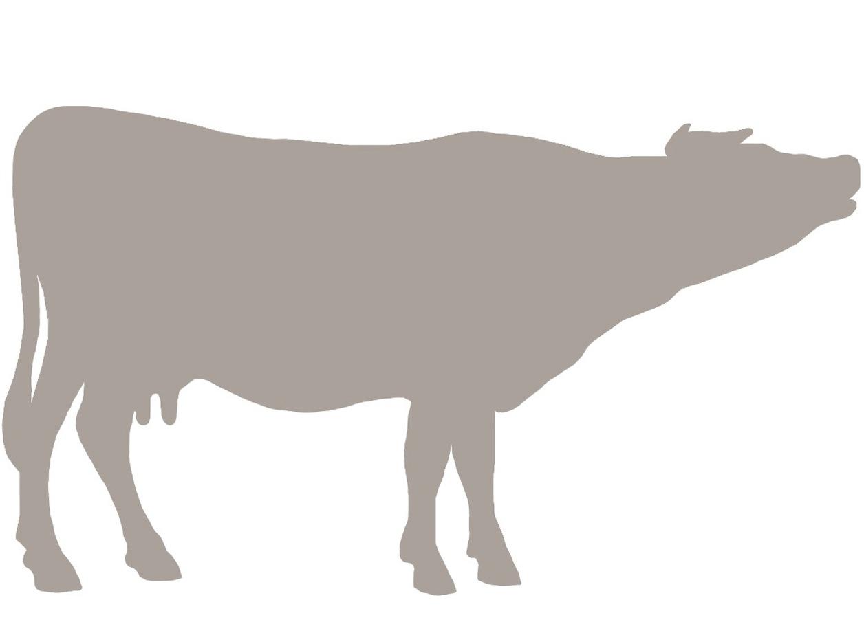 Cow Emblem.jpg