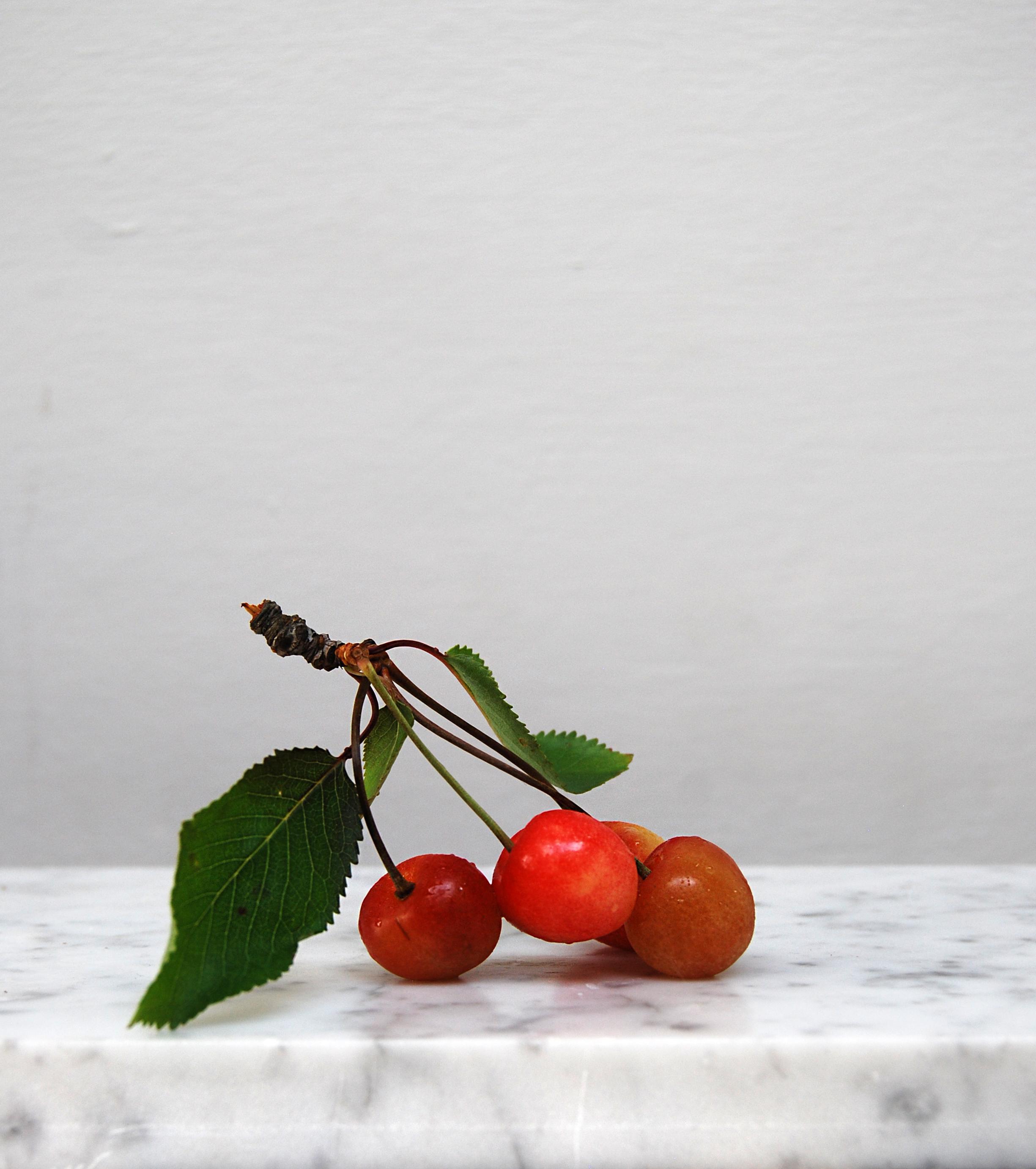 brogdale cherries.jpg