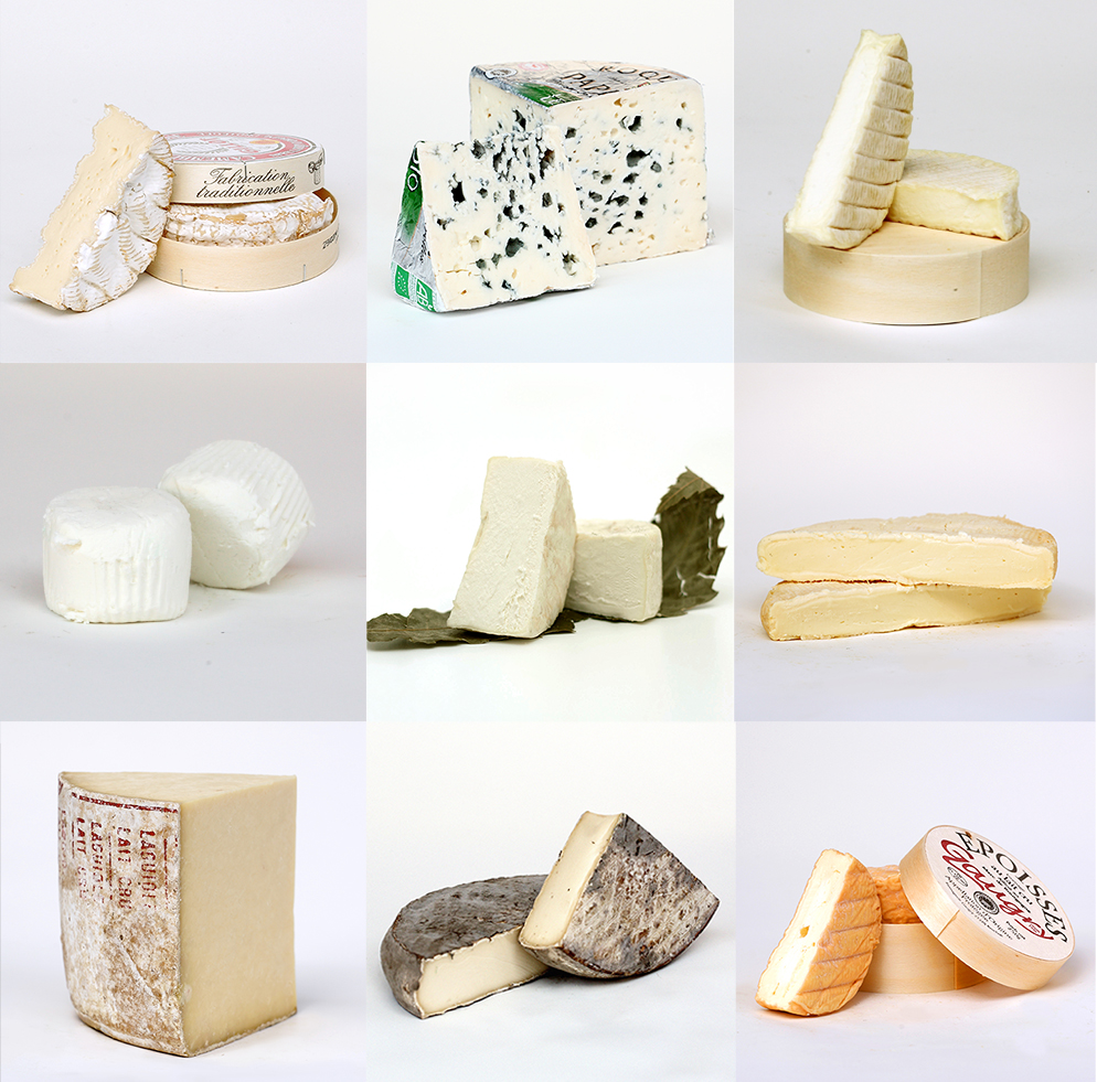 22 May: French Cheese Classification Workshop