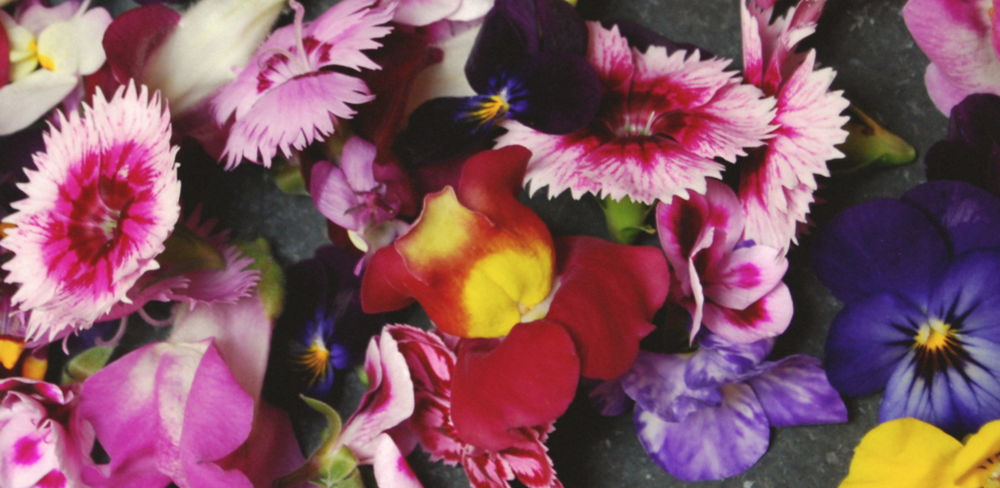 21 May: Edible Flowers Workshop