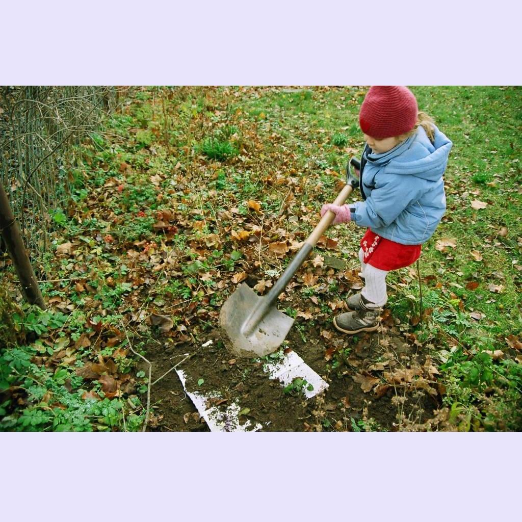 08 planting.jpg