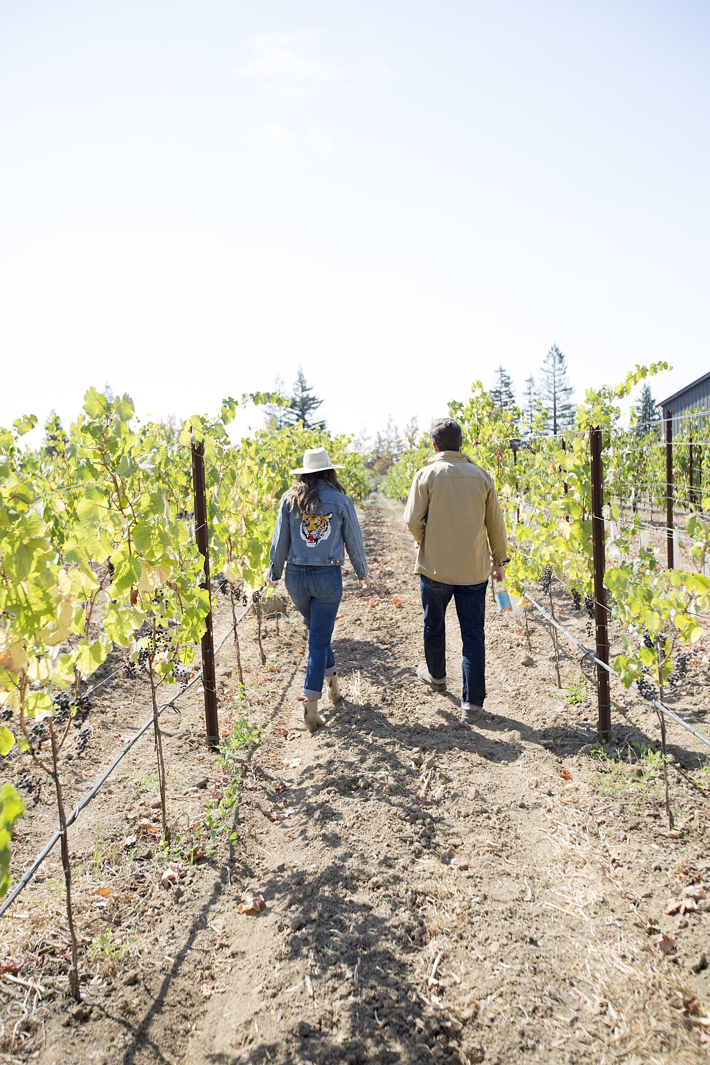 Halcyon Wines
