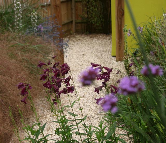 garden-design-9-rogue.png