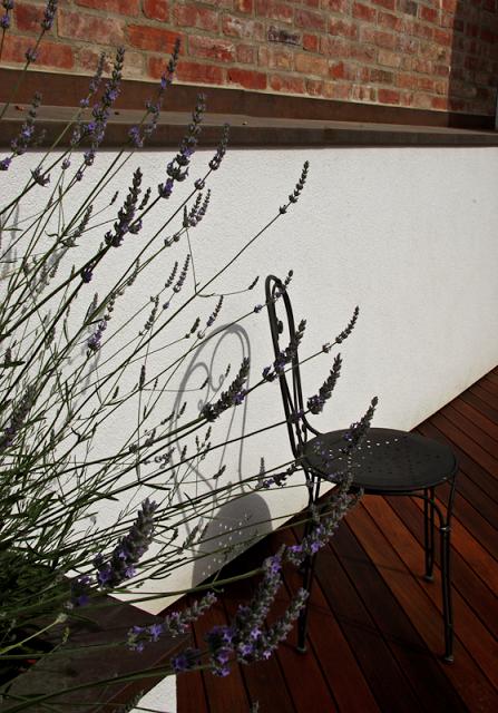 lavender-detail+rogue+designs.png