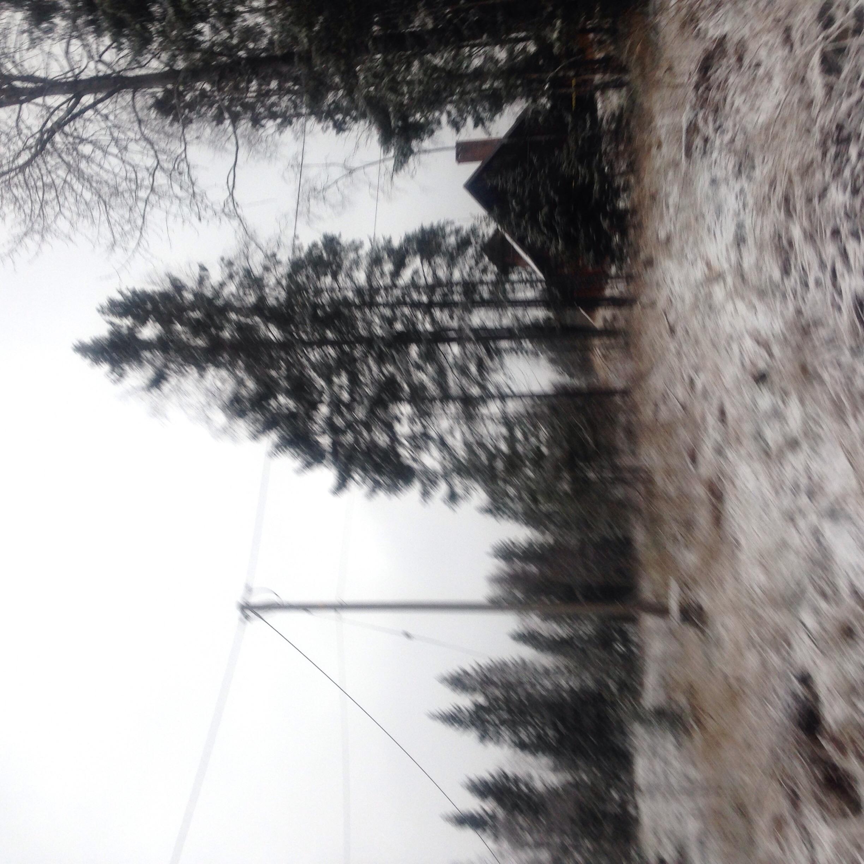 Nordmarkskapellet stikker ut mellom trærne.