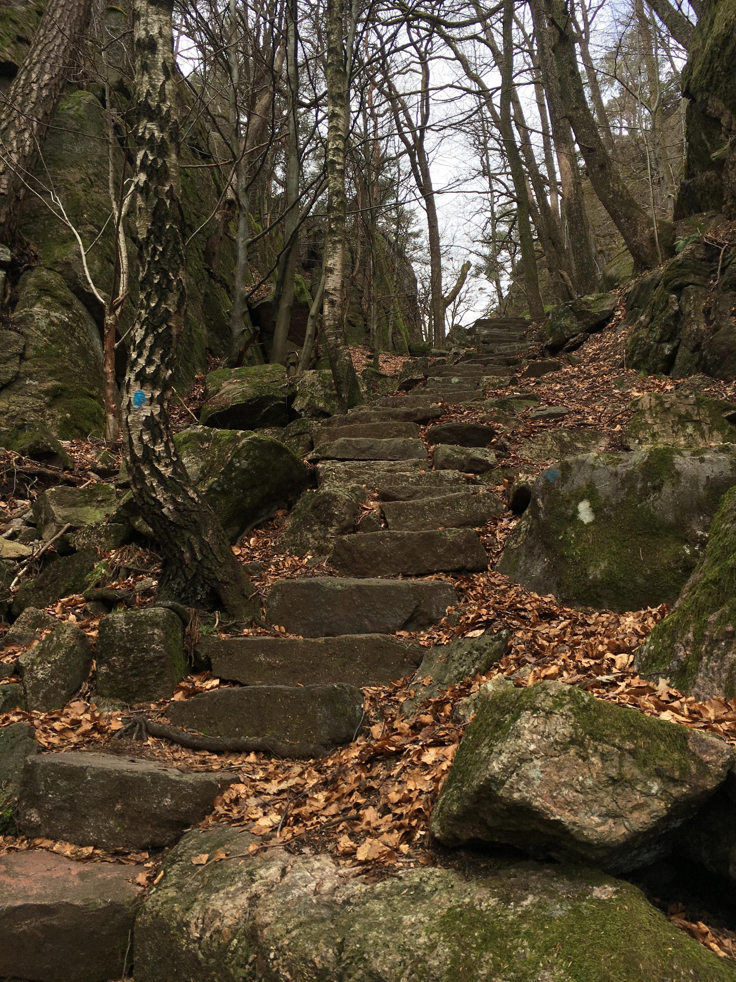 Trappene ned til Ravnedalen. Stilige saker!