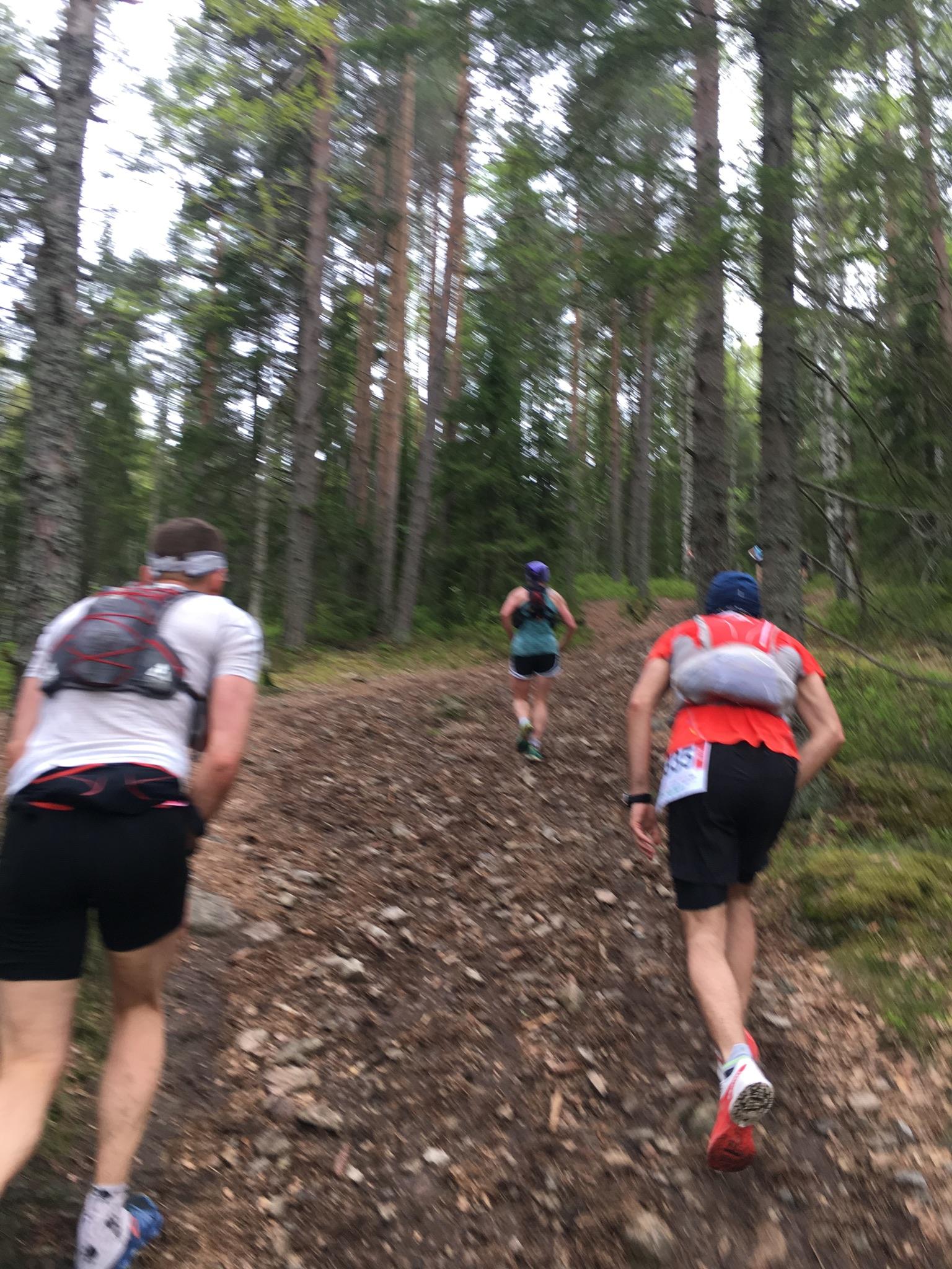 Fine bratte partier opp mot Fagervann og turen over Kamphaug.