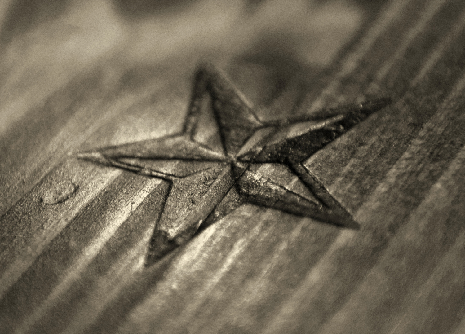wood star b&w web.jpg