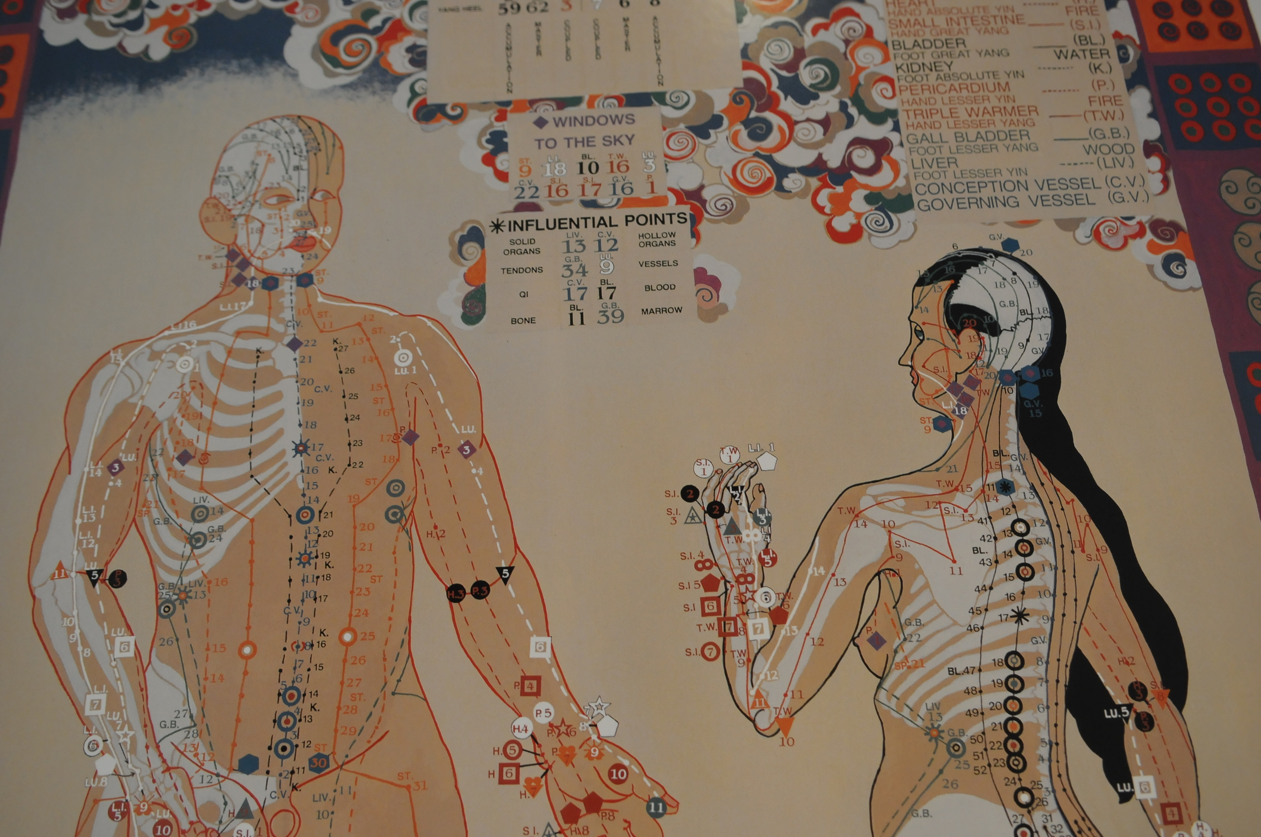 Acupuncture - Take the first step to holistic health and explore our acupuncture services to learn how we can help you.