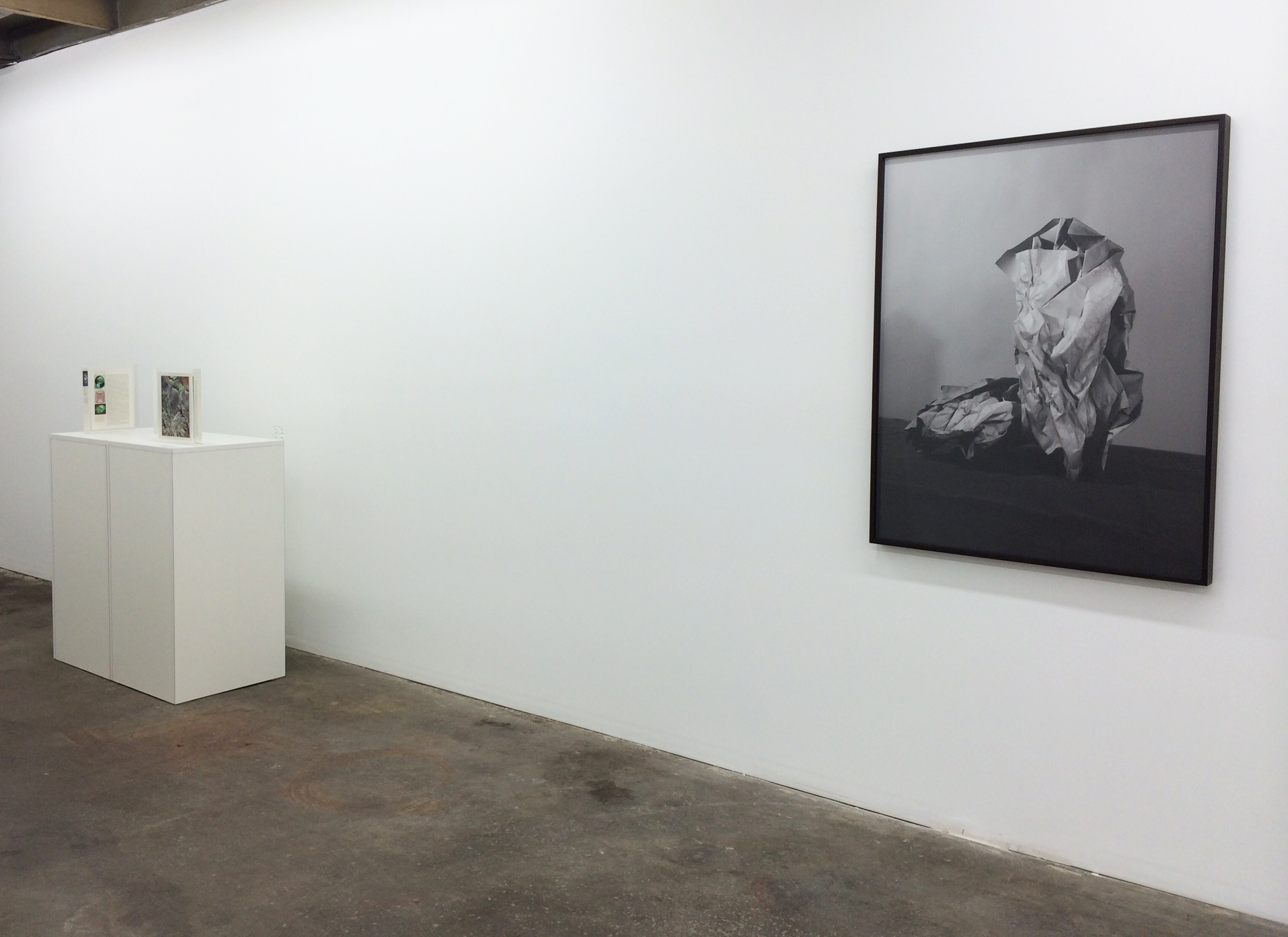 Installation shot Mungo Thomson and Sarah Conaway