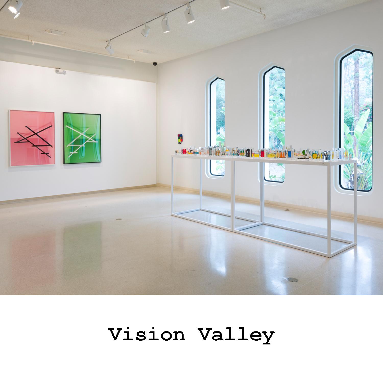 visionvalley.jpg