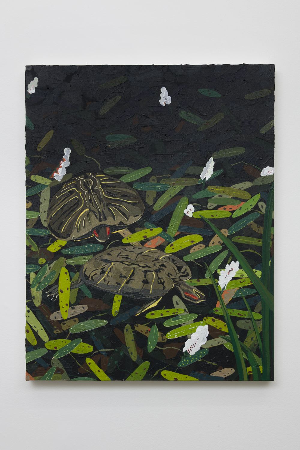 Hilary Pecis  Two Turtles, 2018  Acrylic on canvas  28.5 x 22 inches