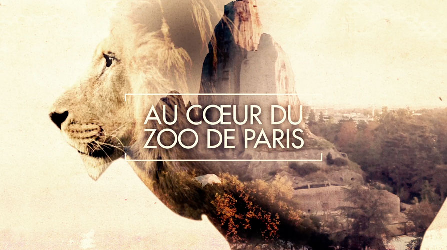 Au Cœur du Zoo de Paris