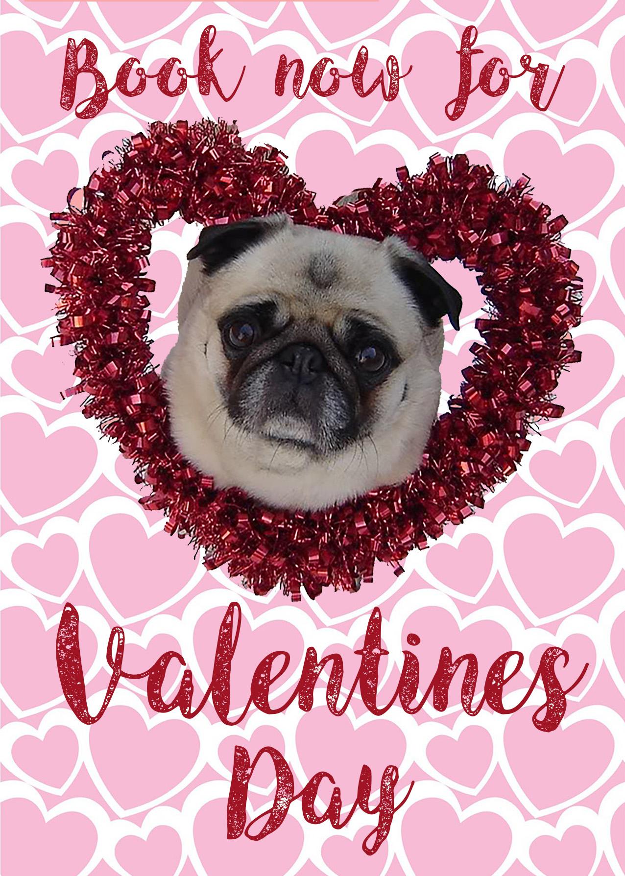 valentines pug.jpg
