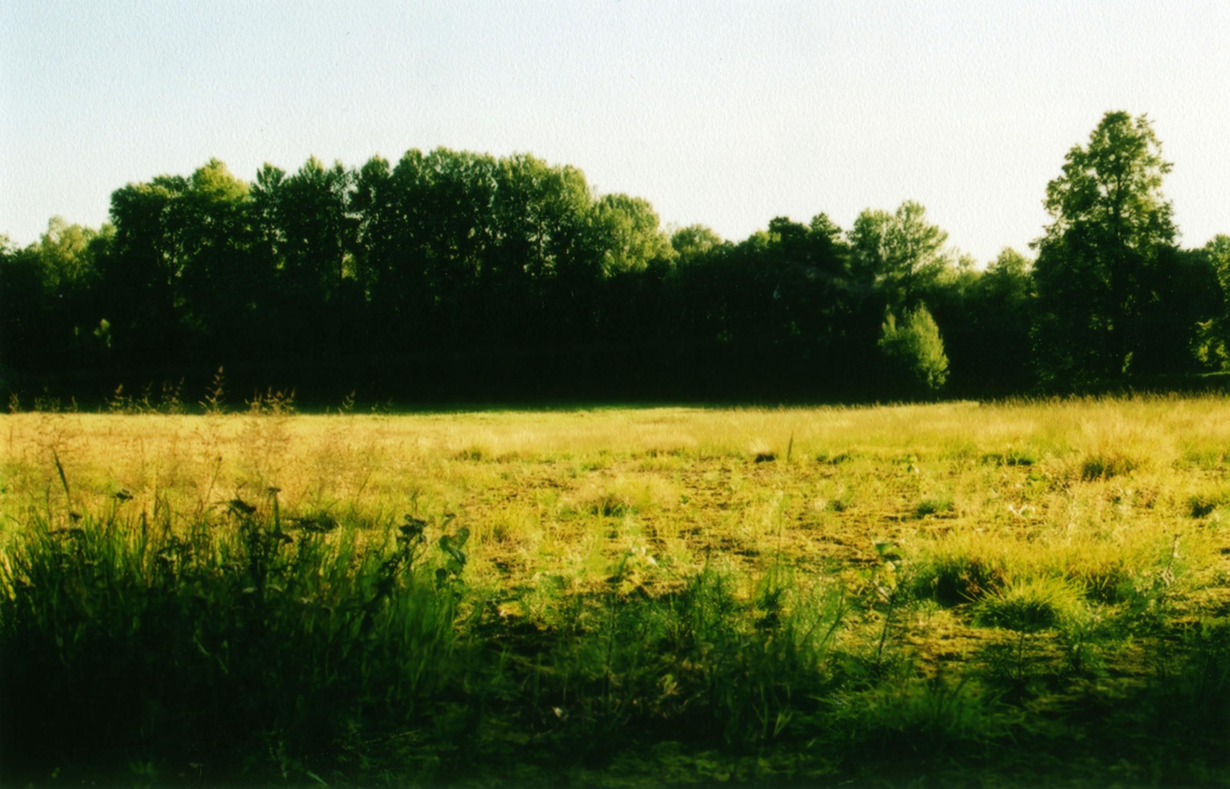 Image 15.jpg