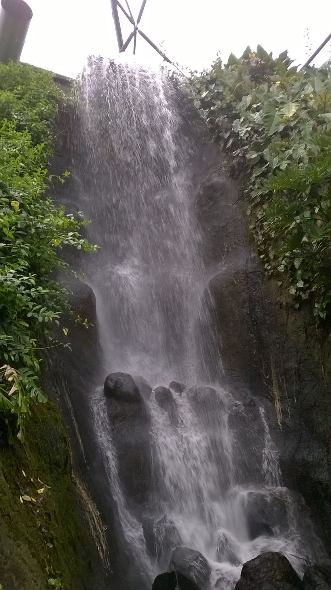 A photo of the waterfall inside the rain forest biome at The Eden Project.