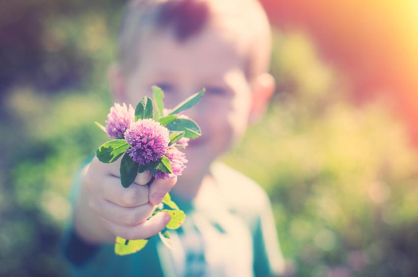 Little boy Thistles Pic HBTSOTR.jpg