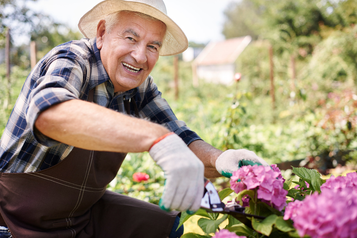 Cutting-a-flowers-for-my-wife-485464410_727x484.jpeg