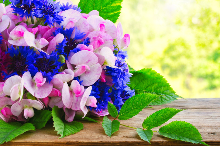 bouquet-of-cornflowers-and-sweet-peas,-on-wooden-table-near-window-831757122_727x485.jpeg