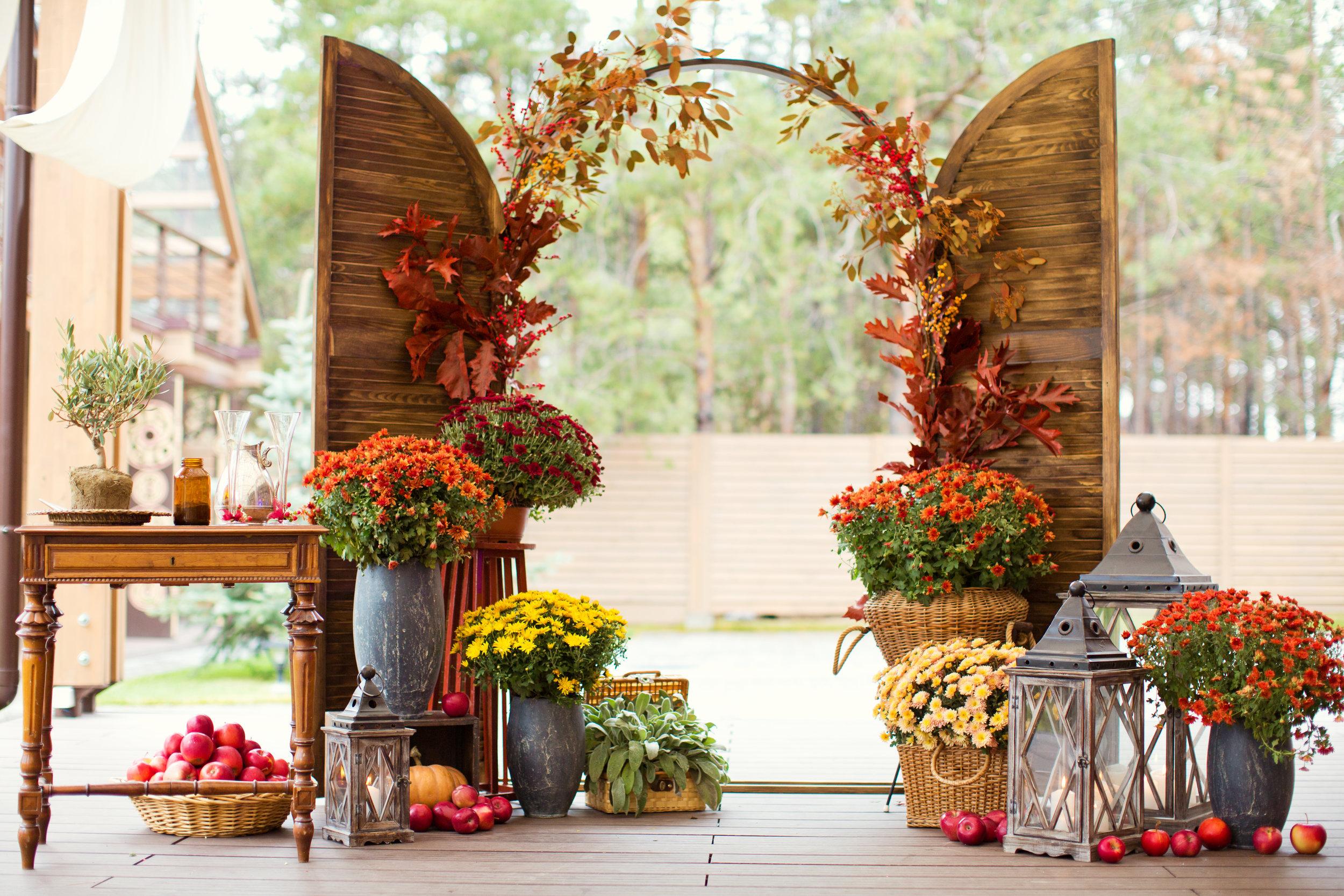 autumn-wedding-ceremony-841150882_5356x3571.jpeg