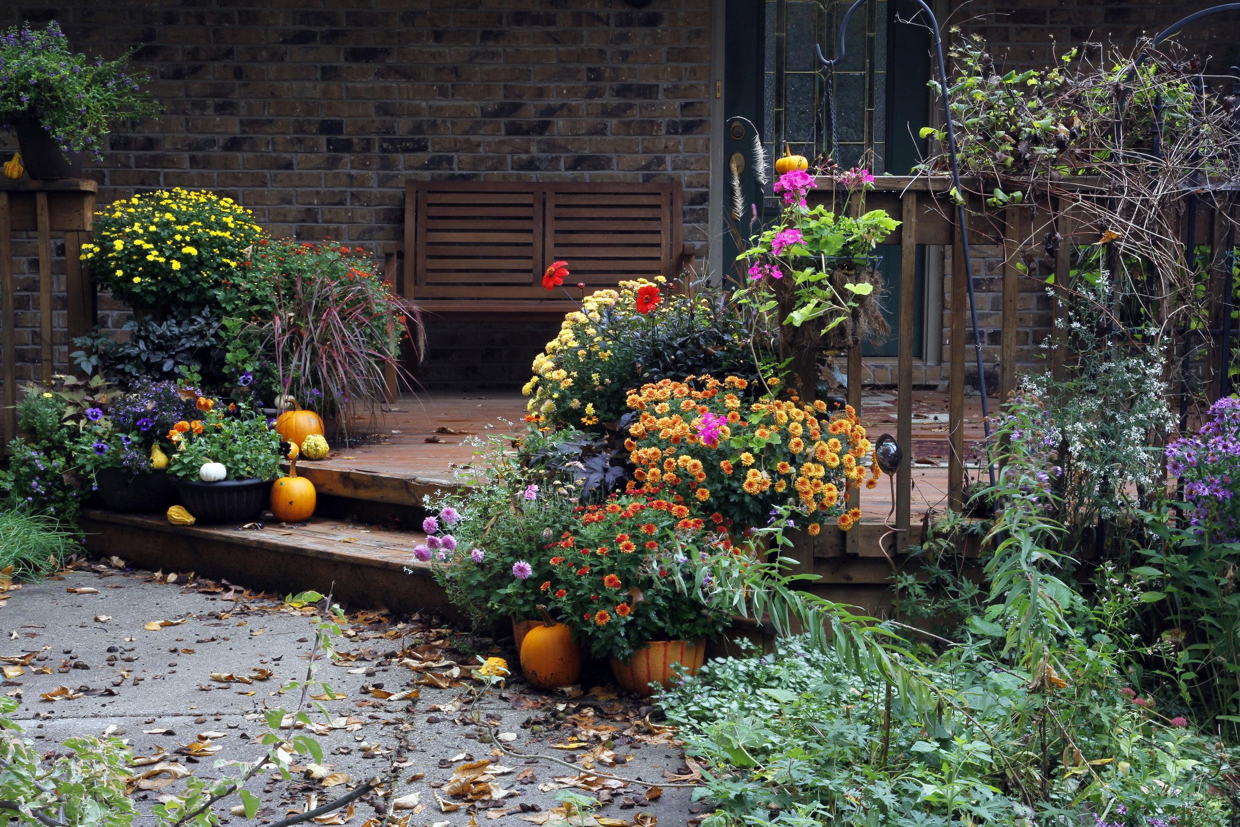 Garden-187440570_5184x3456.jpeg