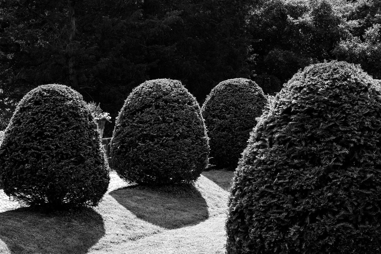 Italian_Garden_2.jpg